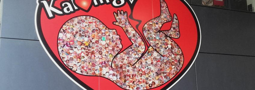 Panneau Coeur en soutien à la maternité de Guingamp - Médiathèque de Guingamp